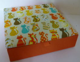 coffret-chats-orange